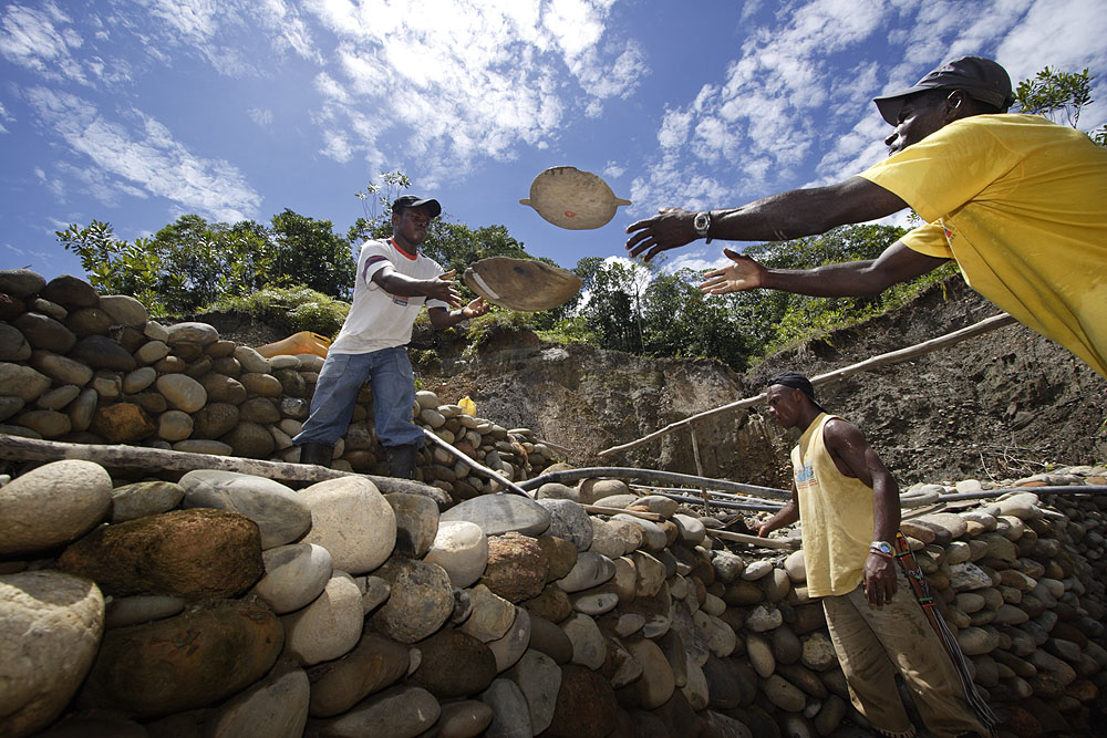 Ameriko's green gold mine in Colombia